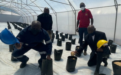MOGALE CITY TEAMS UP WITH CATHEDRAL GROUP TO UPLIFT EMERGING FARMERS